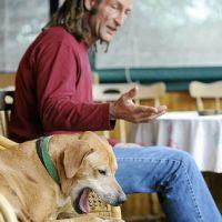 O menino que falava com cães — Martin Mckenna