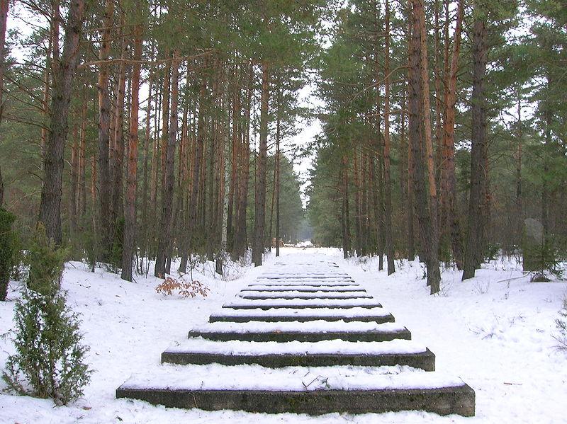 800px-Treblinka_-_Rail_tracks.JPG